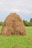 Hay 1 Stock Photo