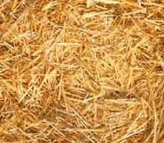 Hay. Straw as a background Stock Image