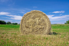 Hay. The central Estonia, The end of summer, farmers reap a crop Royalty Free Stock Image