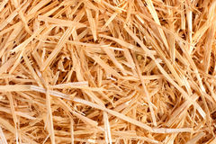 Hay Stock Images
