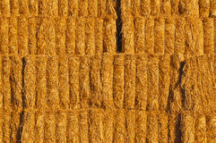 Hay. Closeup absstract view of stacks of deep golden hay piled up at the side of the road in southern Arizona near Gila Bend Royalty Free Stock Photo