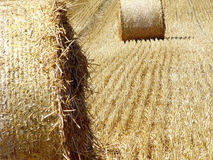 Hay 2. Harvest Stock Images