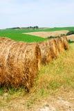 Hay Stock Image