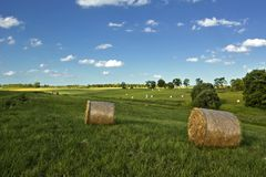 Hay. Stacks on warm summer day royalty free stock photos