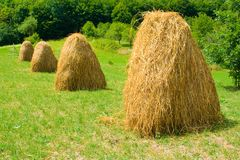 Hay Stock Photography