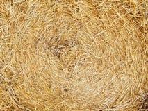 Free Hay Stock Photography - 5751062