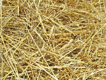Hay. Yellow hay for yellow background Stock Photo