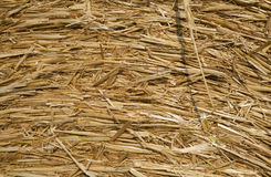 Hay. Close up of a hay ball royalty free stock photos