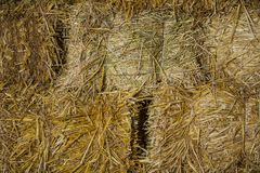 Hay as background Stock Photos