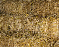 Hay as background Stock Photo