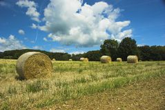 Hay Away! Royalty Free Stock Photography