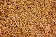 Hay. Background Royalty Free Stock Photography