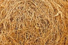 Hay background Royalty Free Stock Image