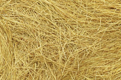 Hay. Background Stock Images