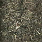 Hay background. Hay close up background in color stock images