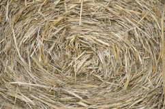 Hay background Royalty Free Stock Images