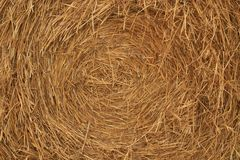 Hay backgrounds. Closeup of a bale of hay for backgrounds Royalty Free Stock Image