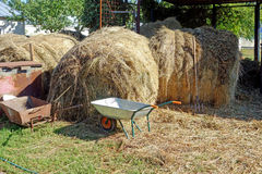 Hay in the backyard Royalty Free Stock Photos