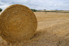 Hay Bail. A large round hay bail recently harvest in a field. Showing a slightly stormy sky in the distance royalty free stock photography