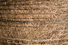Hay bail close up Stock Photography