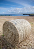 Hay Bail Cornwall Coast Royalty Free Stock Photos