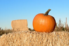 Hay bail with a halloween pumpkin on it Stock Photo