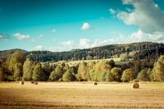 Hay bail harvesting Royalty Free Stock Image