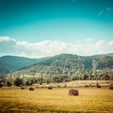 Hay bail harvesting Royalty Free Stock Photography