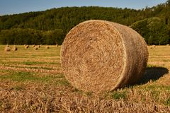 Hay bail harvesting in golden field landscape. Summer Farm Scenery with Haystack on the background of Beautiful Sunset. Stock Photography