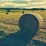 Hay Bail Harvesting In Golden Field Landscape. Summer Farm Scenery With Haystack On The Background Of Beautiful Sunset. Stock Image