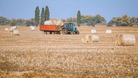 Hay bail harvesting in wonderful autumn farmers field landscape with hay stacks. After cropping and golden ripening wheat field stock photos