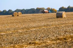 Hay bail harvesting in wonderful autumn farmers field landscape with hay stacks. After cropping and golden ripening wheat field stock photography