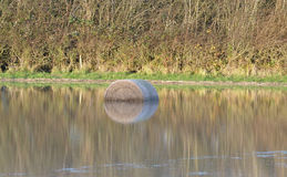 Hay bail with reflection Royalty Free Stock Photo