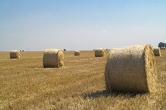 Hay bails royalty free stock image