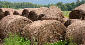Hay Bails Royalty Free Stock Images