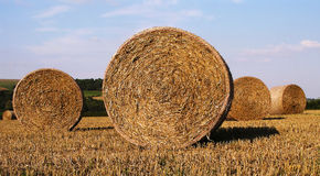 Hay Bails Stock Photo