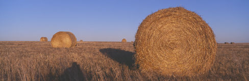 Hay Bails, Stock Image