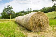 Hay Bails. Close up of circular hail bails in a field royalty free stock photography