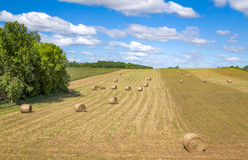 Hay Bails and Cloudscape. Bails of hay and cloudscape in the American Midwest near Hammond, Wisconsin Stock Image