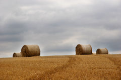 Hay bails in field (1) Stock Photography