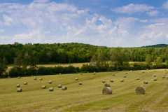 Hay bails in the field Royalty Free Stock Photos