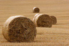 Hay bails in field (3) Royalty Free Stock Photos