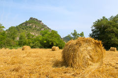 Hay bails in landscape Stock Image