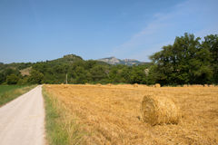 Hay bails in landscape Royalty Free Stock Photo