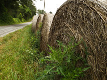 Hay Bails. A row of hay bails next to a road Royalty Free Stock Photos