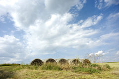 Hay Bails. Several hay bails in a field royalty free stock photos