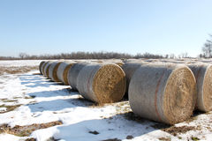 Hay bails with snow Stock Images