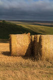 Hay Bails. On the South Downs, England stock photos