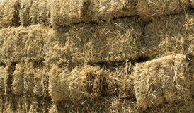 Hay Bails. Stacked Straw Hay Bails, Turkey royalty free stock photography