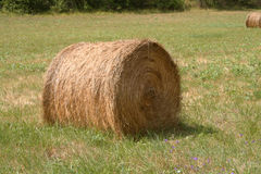 Hay bal Stock Photo